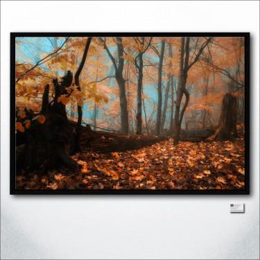 Quiet Blues Of Fallen Leaves